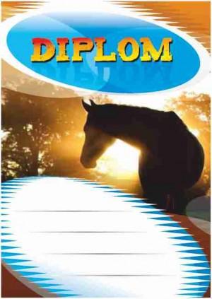 Diplom DL140