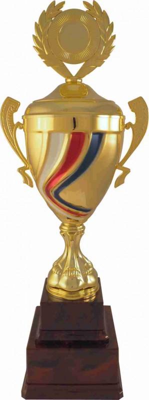 Sportovní putovní pohár PP38