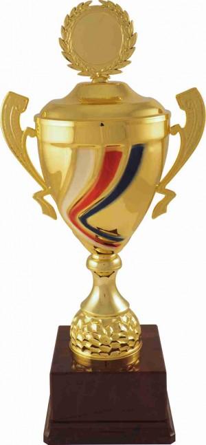 Sportovní luxusní pohár PLT118 s českou trikolórou