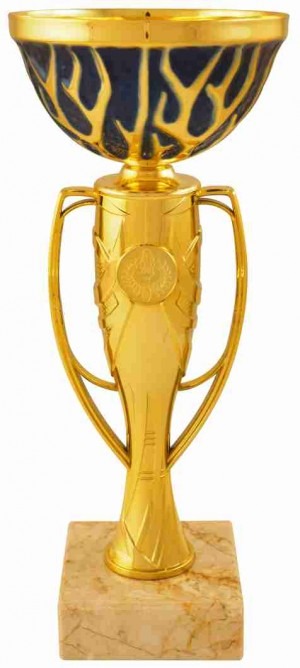 Sportovní pohár PE218