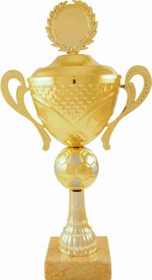 Sportovní pohár PS173 Fotbal