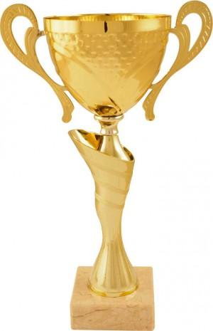 Sportovní pohár PS163