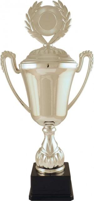 Sportovní luxusní pohár LT002