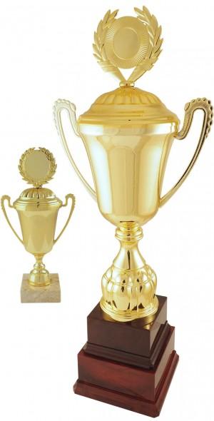 Sportovní putovní pohár PP40,PP40K