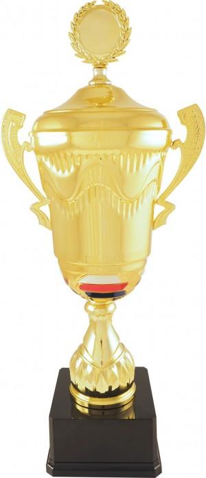 Sportovní luxusní pohár PLT100 s českou trikolórou