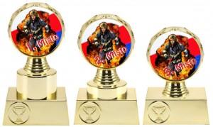 Sportovní hasičská trofej N31+P514, N32+P514,N33+P514