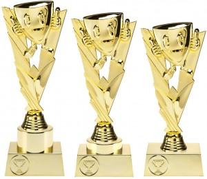 Sportovní trofej N31.01,N32.01,N33.01+P197.01