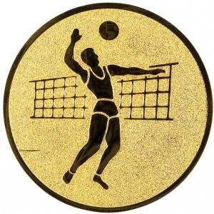 Emblém E19 Volejbal