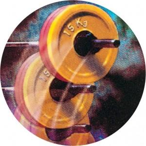 Emblém barevný EM191