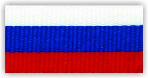 Stuha s karabinou V2SK (Slovenská trikolora)