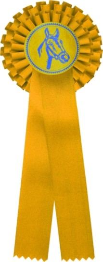 Kokarda dvouřadá K2 žlutá