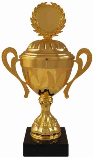 Sportovní pohár PS541