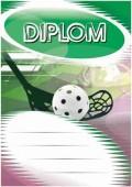 Diplom DL110 - Florbal