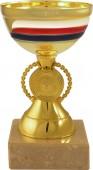 Sportovní pohár PET034 s českou trikolórou