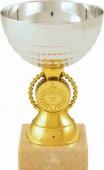 Sportovní pohár PD113