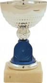 Sportovní pohár PE013