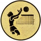 Emblém E20 Volejbal