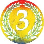 Emblém barevný EM3